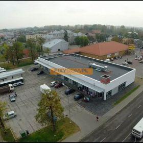 Lokal Koło, ul. Pck