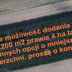 Działka, pow. 2200 m2 lub więcej (18 km od Białej Podl.)